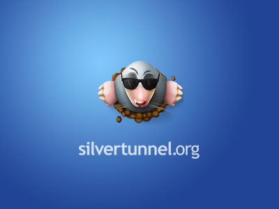 Silvertunnel.org